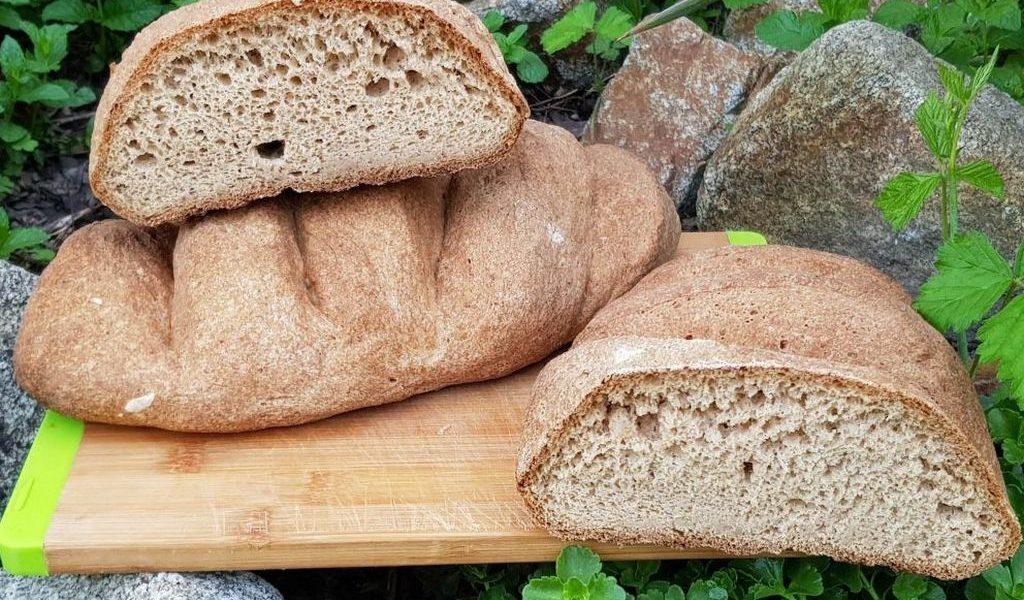 gm-hajdinas-kenyer